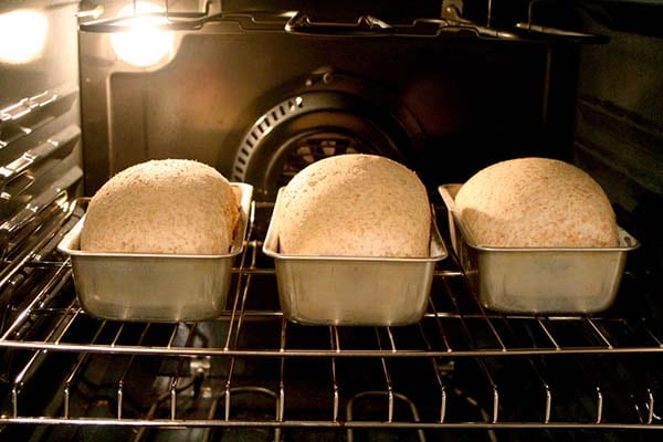 bread-cooking-in-electric-oven
